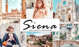 Siena Mobile & Desktop Lightroom Presets