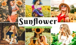 Sunflower Lightroom Presets Pack 4659224