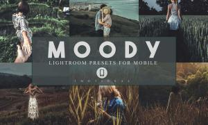 14 Moody Mobile Lightroom Presets 3983765