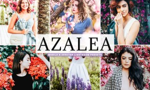 Azalea Mobile & Desktop Lightroom Presets 4742189