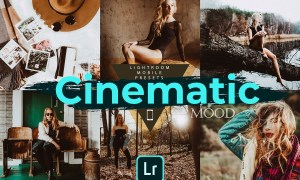 Cinematic Mood LR Mobile Presets 4728561