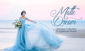 Matte Dream Lightroom Presets 3395261