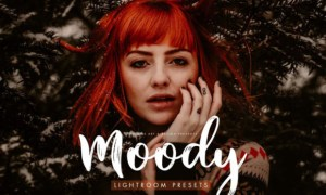 Moody Presets for Desktop + Mobile 3827112