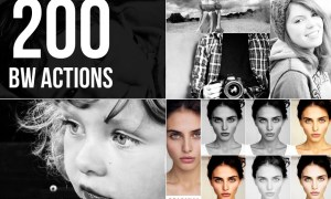B-W Actions Bundle 306683