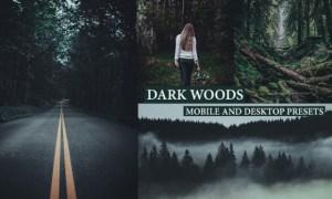 Cinematic Dark Woods Lightroom Presets 4222322