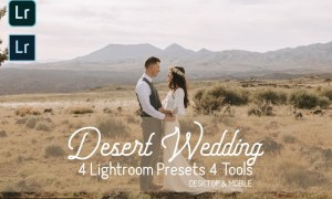 Desert Wedding Lightroom Presets 4894513
