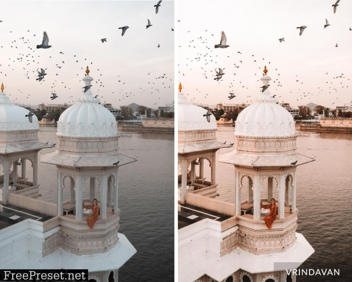 Finduslost - India Presets Collection
