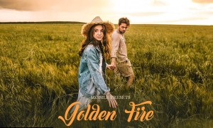 Golden Fire Mobile Presets 4032748
