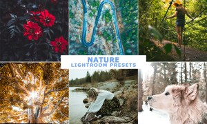 Nature Lightroom Presets 26129700