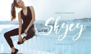 Skyey Mobile Presets 4143042