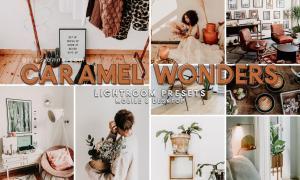 94. Caramel Wonders Presets 4691195