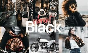 Lightroom Preset-Vibrant Black 4976199