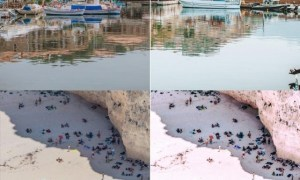 Navagio Mobile & Desktop Lightroom Presets 5066776