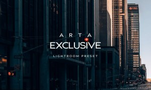 ARTA Exclusive Preset For Mobile and Desktop Light