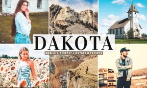 Dakota Mobile & Desktop Lightroom Presets
