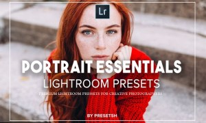 Essential Portraits lightroom presets