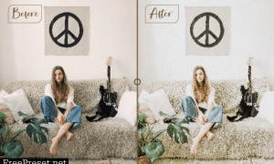 Lifestyle Blogger Lightroom Preset for Mobile and Desktop 26936313