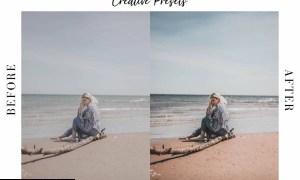 Summer Mobile-Destkop Lightroom Presets