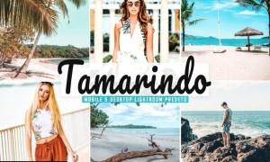 Tamarindo Mobile & Desktop Lightroom Presets