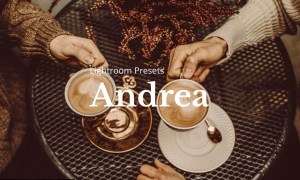 10 Andrea Lightroom Presets 5205957