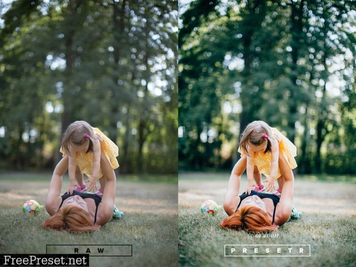 Lightroom Presets Collection - Presetr Two