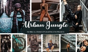 Urban Jungle Mobile & Desktop Presets Street ligthroom presets