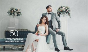 50 Perfect Wedding LUTs (Look Up Tables)