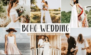 Boho Wedding Mobile & Desktop Lightroom Presets