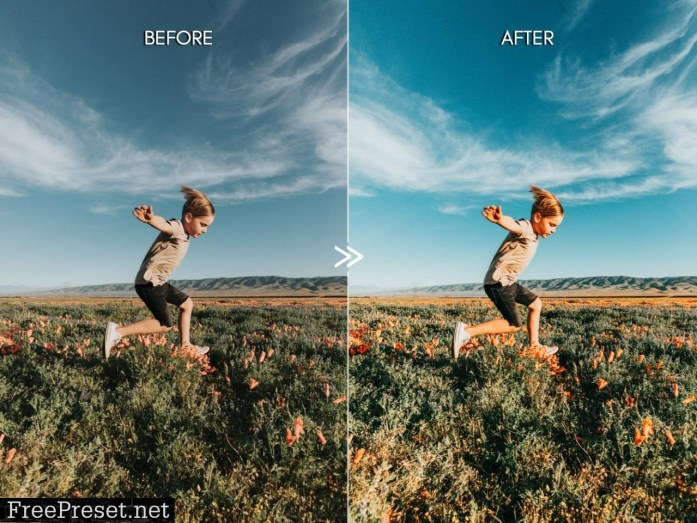 BRIGHT VIVID COLOR LIGHTROOM PRESETS 4912047