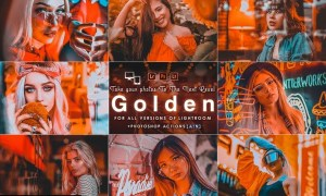 Golden Portrait ( Actions and Presets )