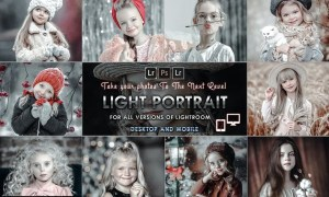 Light Portrait Presets Mobile and Desktop