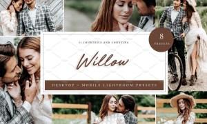 Lightroom Presets | Willow x 8 5039581