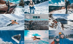 Ski Mood Presets For Mobile and Desktop