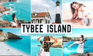 Tybee Island Mobile & Desktop Lightroom Presets