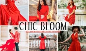 Chic Bloom Mobile & Desktop Lightroom Presets