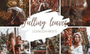 Falling Leaves Mobile & Desktop Lightroom Presets 5461468