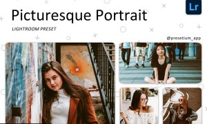 Picturesque - Lightroom Presets 5227543