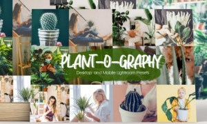 Plant-o-graphy Lightroom Presets 5944442