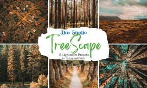 Tree Scape Lightroom Presets