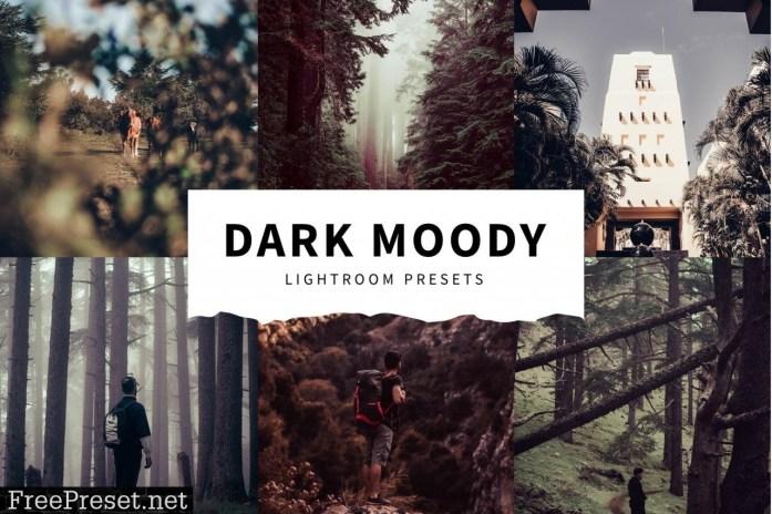 10 Dark Moody Lightroom Presets 5516123