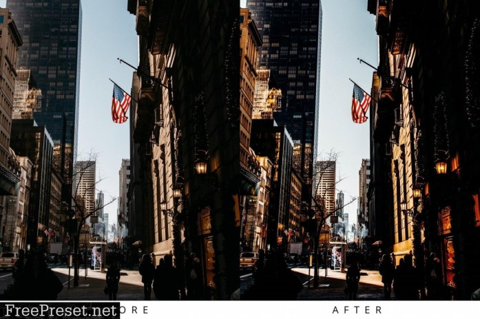 10 Matte VSCO Lightroom Presets 5355960