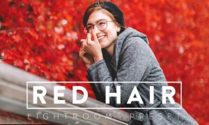 10 REDHEAD Lightroom Preset 5468083