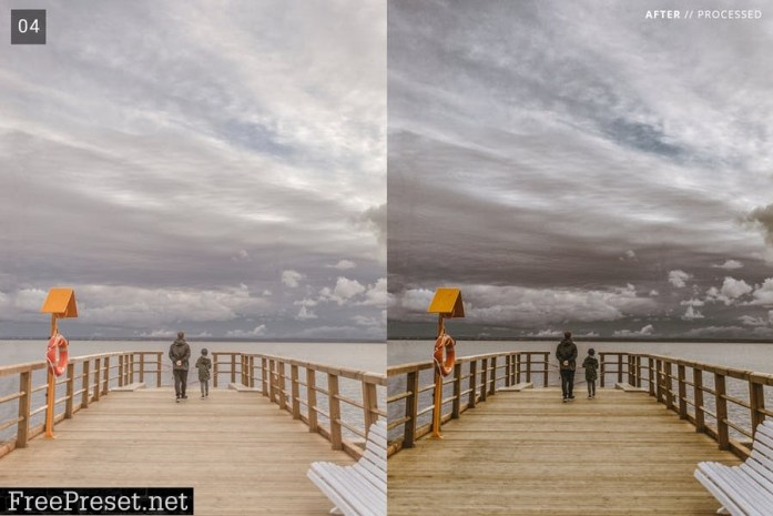 6 Pro Moody Style Lightroom Presets + Mobile