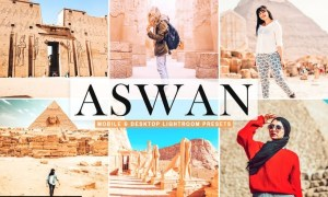 Aswan Mobile & Desktop Lightroom Presets