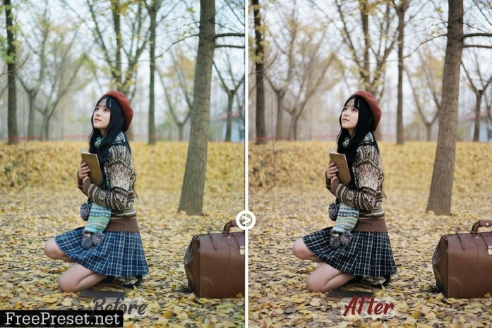 Autumn Colors LUTs Pack#2 U3ZWRAQ