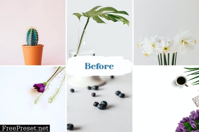 Better White Lightroom Presets