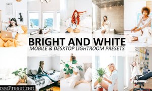 Bright and White Lightroom Preset 5562498
