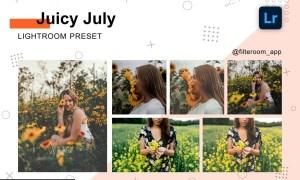 Juicy July - Lightroom Presets 5236497