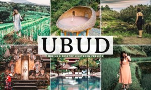 Ubud Mobile & Desktop Lightroom Presets