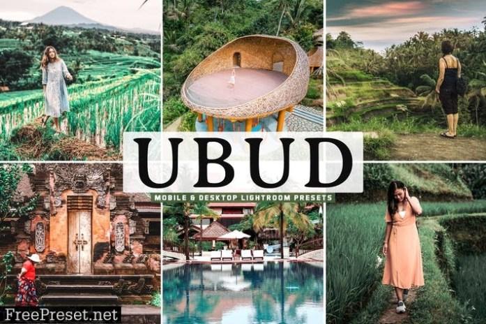 Ubud Mobile & Desktop Lightroom Presets